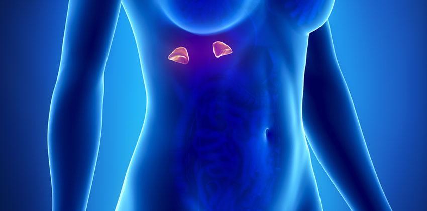 Καρκίνος Επινεφριδίων