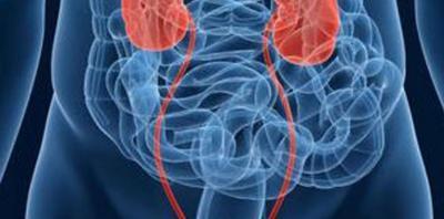 Επεμβάσεις νεφρών και ουρητήρα